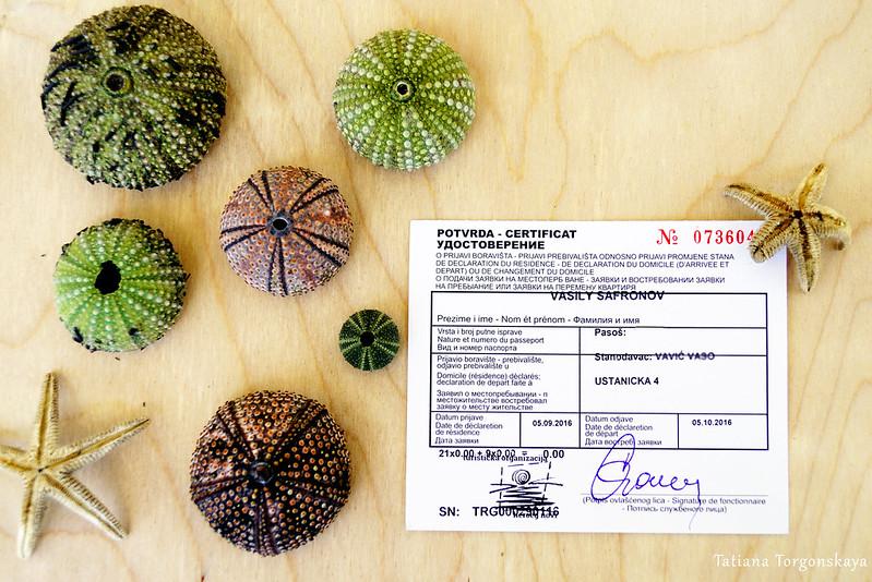 Заполненная регистрационная карточка туриста