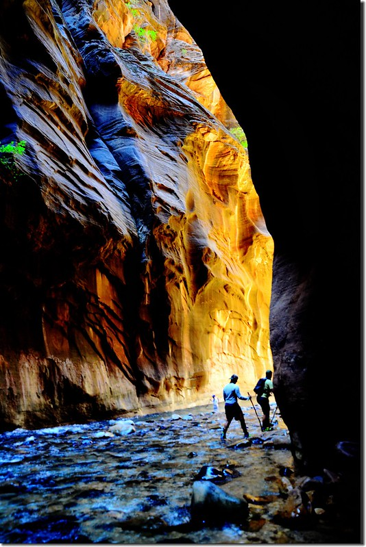 The Narrows, Zion National Park (53)