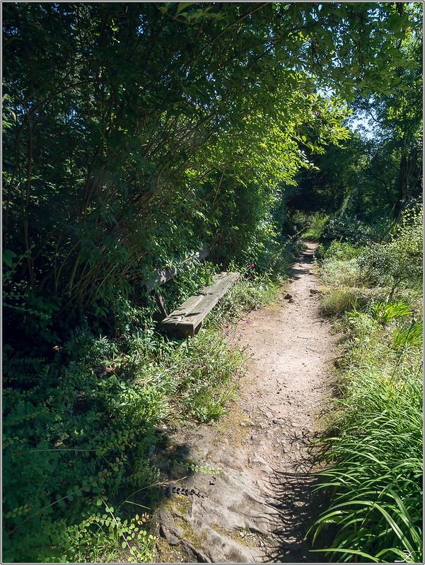 Jardin botanique Saverne: le jardin 43040189322_c83091c35c_c