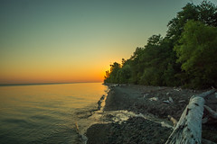 Morning at Lake Erie Bluffs