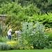 A horticultural conundrum