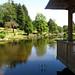 Japanese Garden, Cowden Castle 6.vii.2018 4