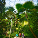 Eden Project - Fowey Holiday by Dave Smith