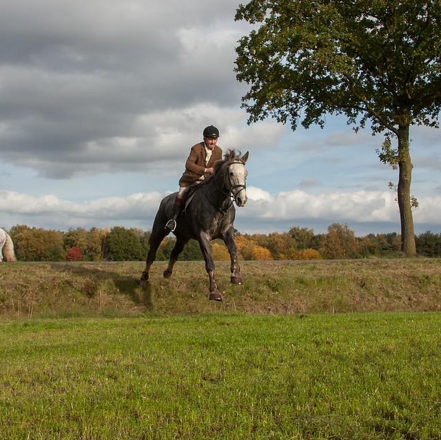Midland Hunt Landhorst 2015-9059
