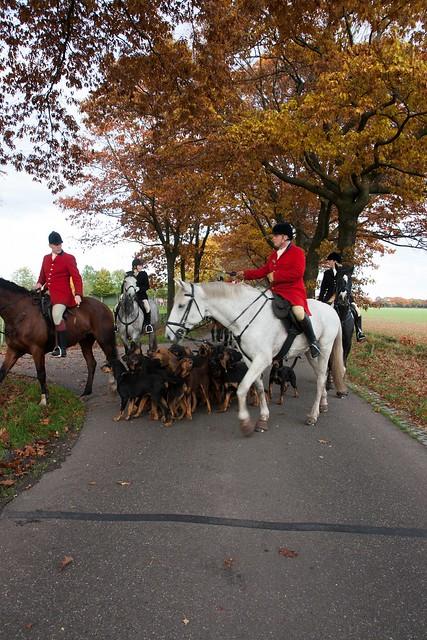 Midland Hunt Landhorst 2015-9155