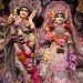 Darshan from IMG_0028