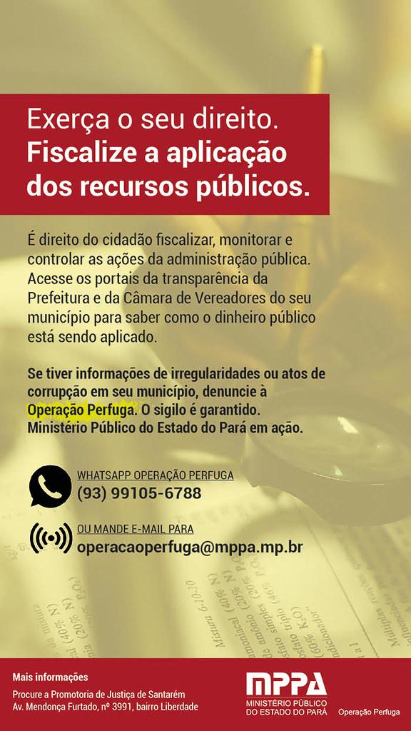 Perfuga Baixo Amazonas - campanha