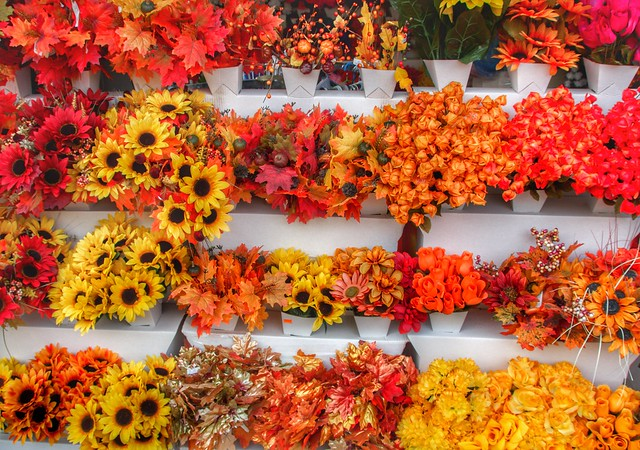 Brockville Ontario - Canada - Store front Autumn Flower Cluster - Colonial Flowers & Gift Shoppe