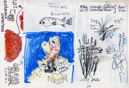 Sketchbook #113: Trip to Bonaire - Underwater Sketching / Scuba Diving with a Sketchbookhchina Sketchbook #113: Trip to Bonaire - Underwater Sketching / Scuba Diving with a Sketchbook