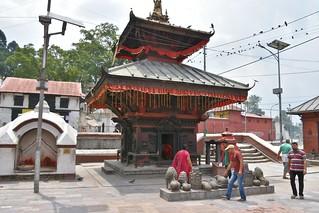 Pashupatinath, Kathmandu (2)