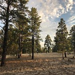 Our backyard for the weekend by bartle_man