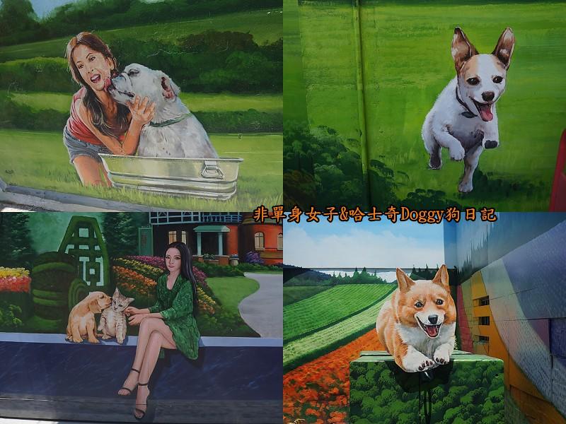 彰化一日遊10忠犬3D彩繪