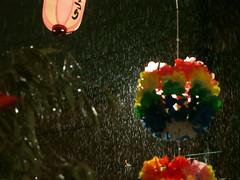 雨に濡れる七夕飾り07
