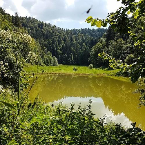 Doubs(17) 20180713_115339