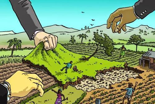 कार्पोरेट खेती
