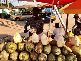 Our Favorite Coconut Man in Accra 🇬🇭