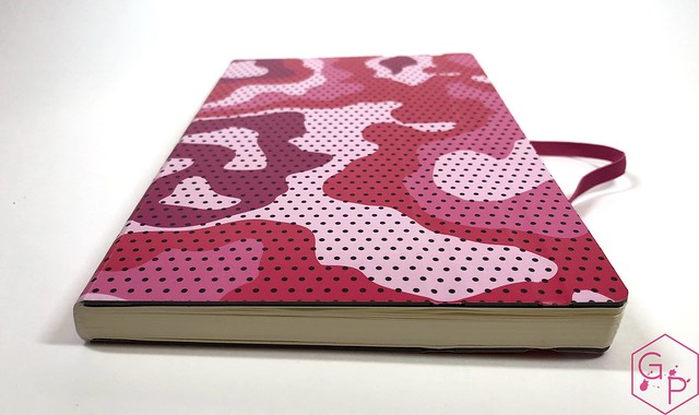 Stifflexible Notebooks from @CarolLuxury 9