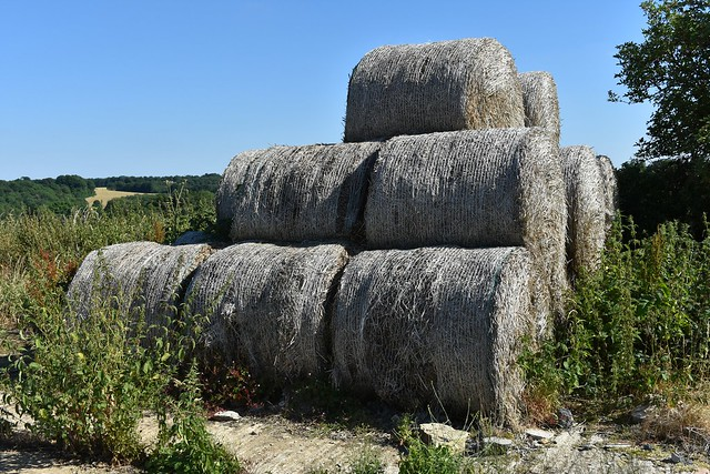 Old Hay Bales