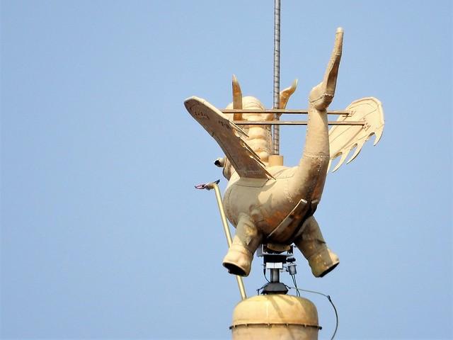uitzicht op toren Sint-Baafskathedraal: draak