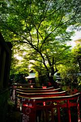 Hanazono Inari Shrine