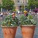 Topiary Bushes, by Bread and Butter Theatre, at the Bradford Festival
