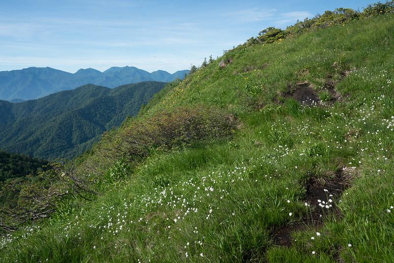 田代山の山頂付近