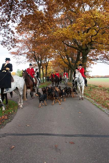 Midland Hunt Landhorst 2015-9154