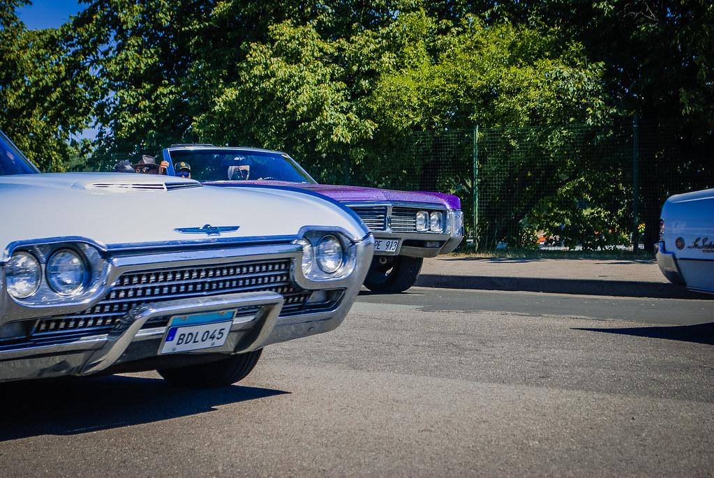 Cool bumpers ! DSC_9135