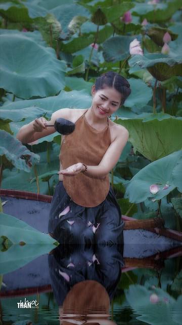 Rainy at lotus pond