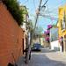 San Miguel Street Scene (1) por Carl Campbell