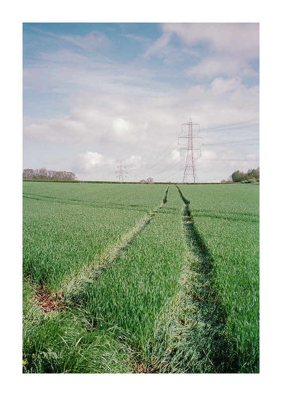 FILM - Pylon fields