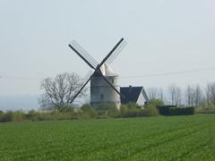 Morighem.- Le moulin Debacker ou moulin d'Achille en 2018