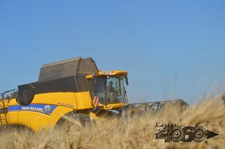 New Holland Cx 8080 el-129