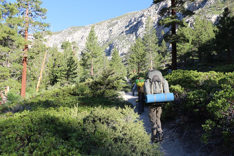 Hiking in through the lower canyon with Pines and Manzanitas on the North Fork Big Pine Creek Trail
