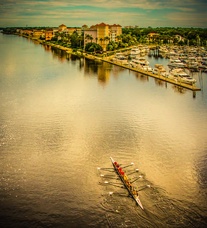 Honorable Mention - Lori Vetter - Rowers