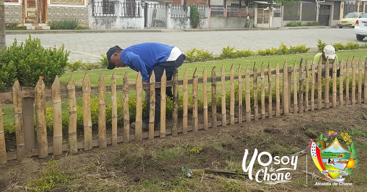 Alcaldía de Chone realizará capacitación sobre cuidado de áreas verdes