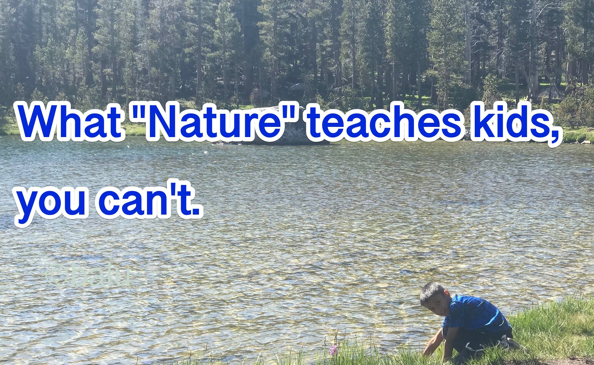 "What ""Nature"" teaches kids, you can't."