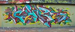 CHIPS CDSK SMO A51 DVK
