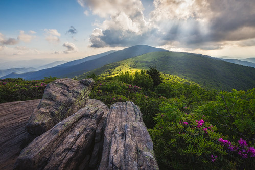 Afternoon Delight - Jane Bald, Roan Mountain, North Carolina, Tennessee, Appalachian Trail