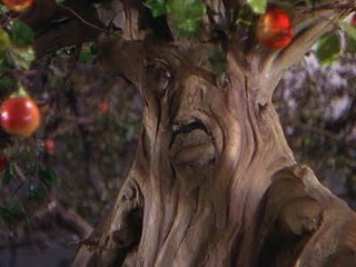 Wizard of Oz Talking Tree