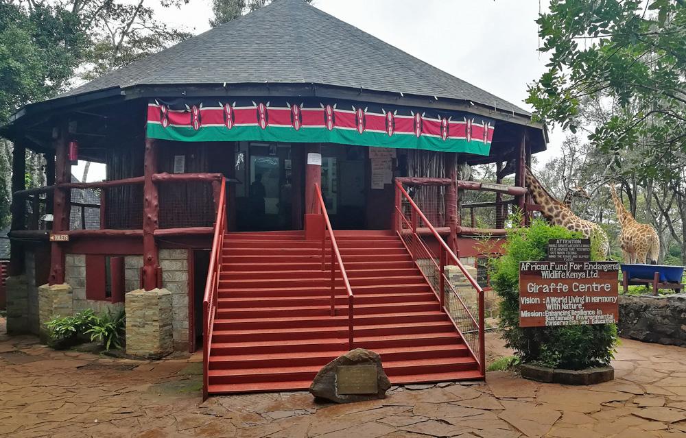 giraffe-centre-kenya-visit