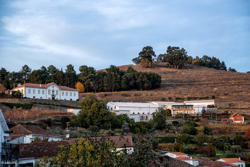2017.- Pelo Douro no outono I (M313+N222) (302)