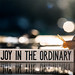 find joy in the ordinary by auntneecey