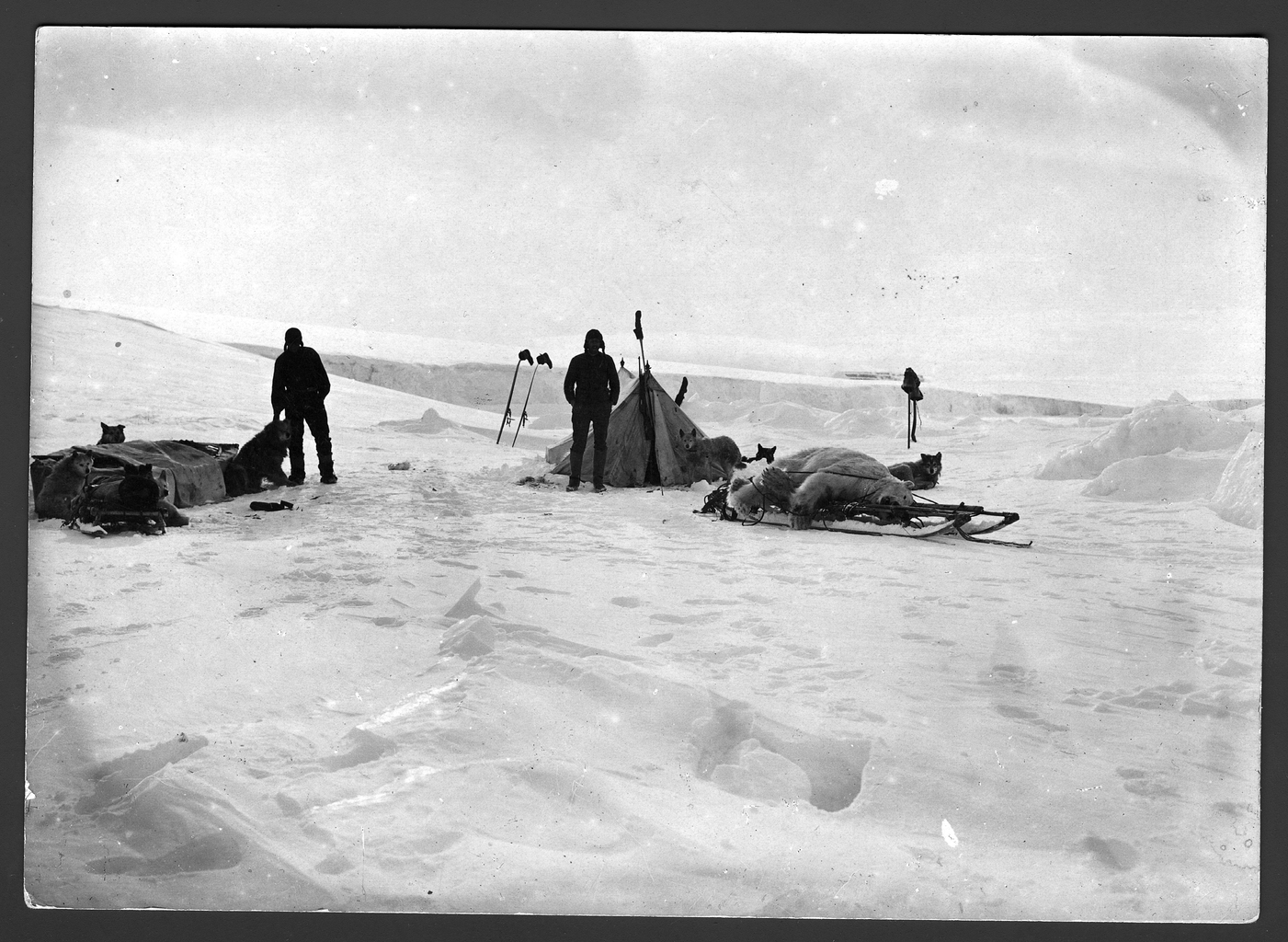 Участники санной экспедиции около своей палатки