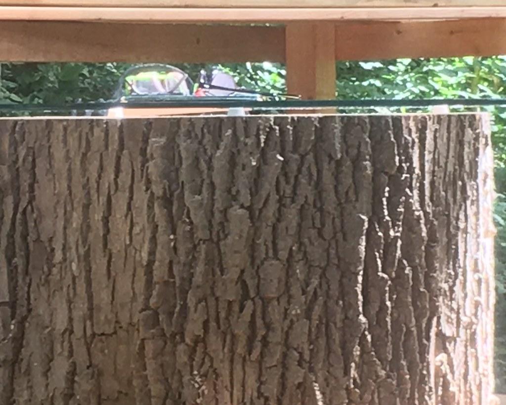 2018-06-27_Smoker_Deck_(Stump_Table-Side_View)