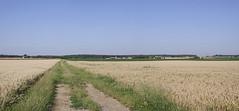 Vievy-le-Rayé (Loir-et-Cher)