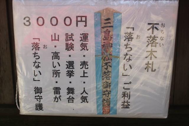 mishimajinja023