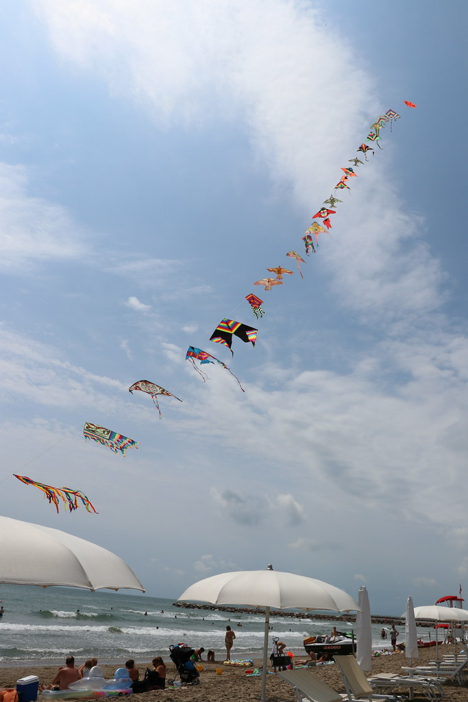 Kites from a haggler