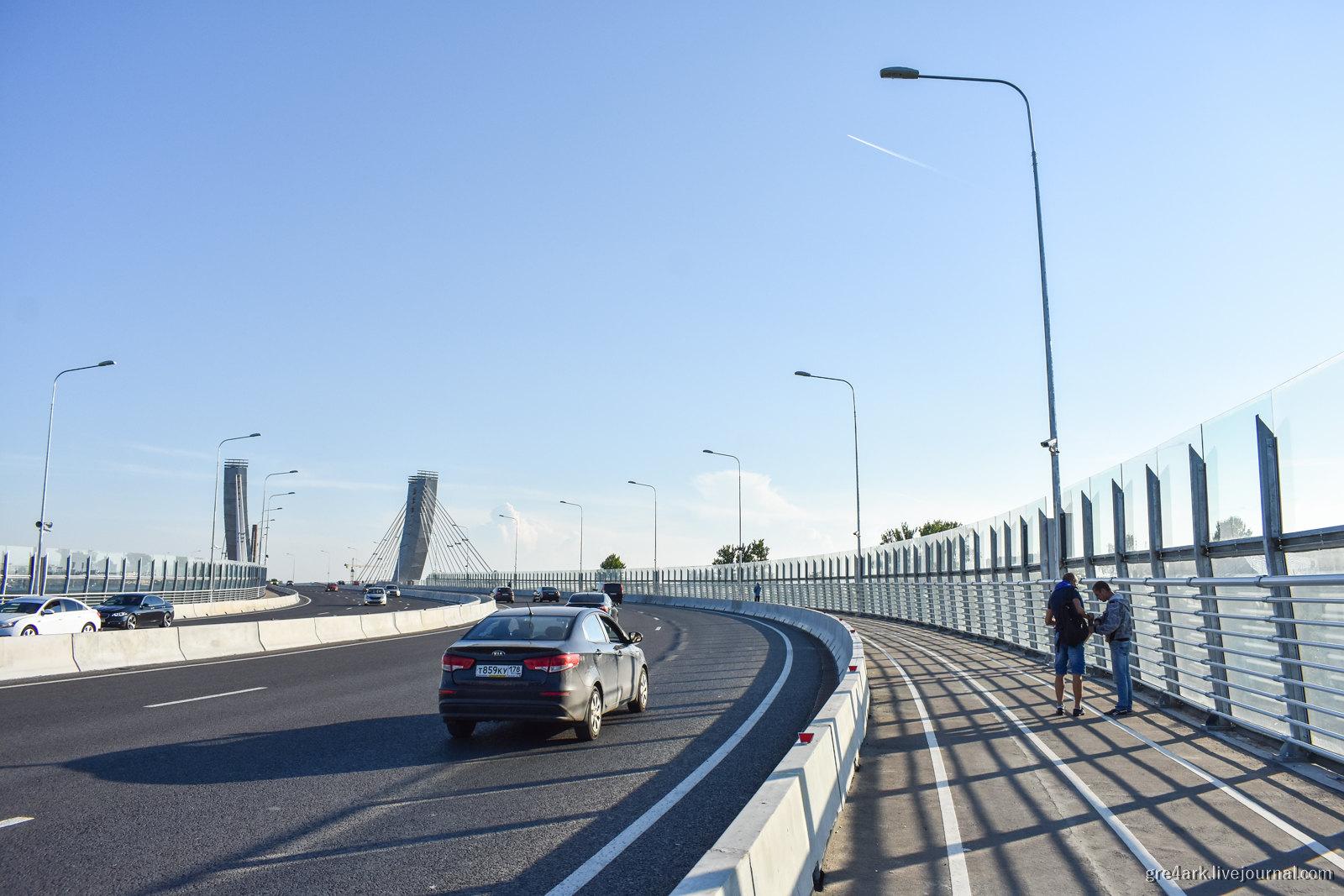 Петербургский мост глупости (ещё один) градостроительное преступление