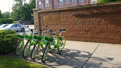 City Hall Lime Bikes